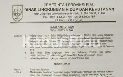 Pakar Hukum Pidana Riau Sayangkan Eksekusi Sawit PSJ Gagal