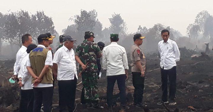 Desak Penanganan Karhutla PT Arara Abadi, Formasi Riau dan Jikalahari Ancam Lapor Jokowi